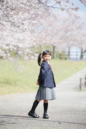 入学記念写真、桜ロケ